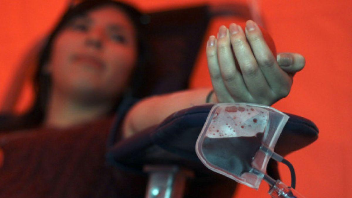 Día del Donante de Sangre este 2014 se centrará en prevenir la mortalidad materna