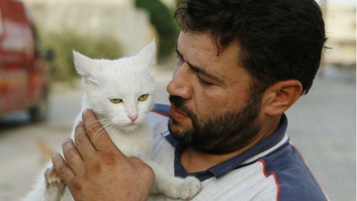 La historia del hombre que alimenta gatos sin hogar en la sitiada Aleppo