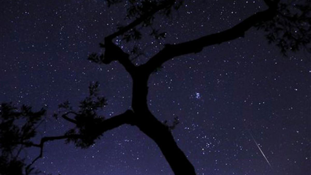 Lluvia de Perseidas: consejos para observar el fenómeno