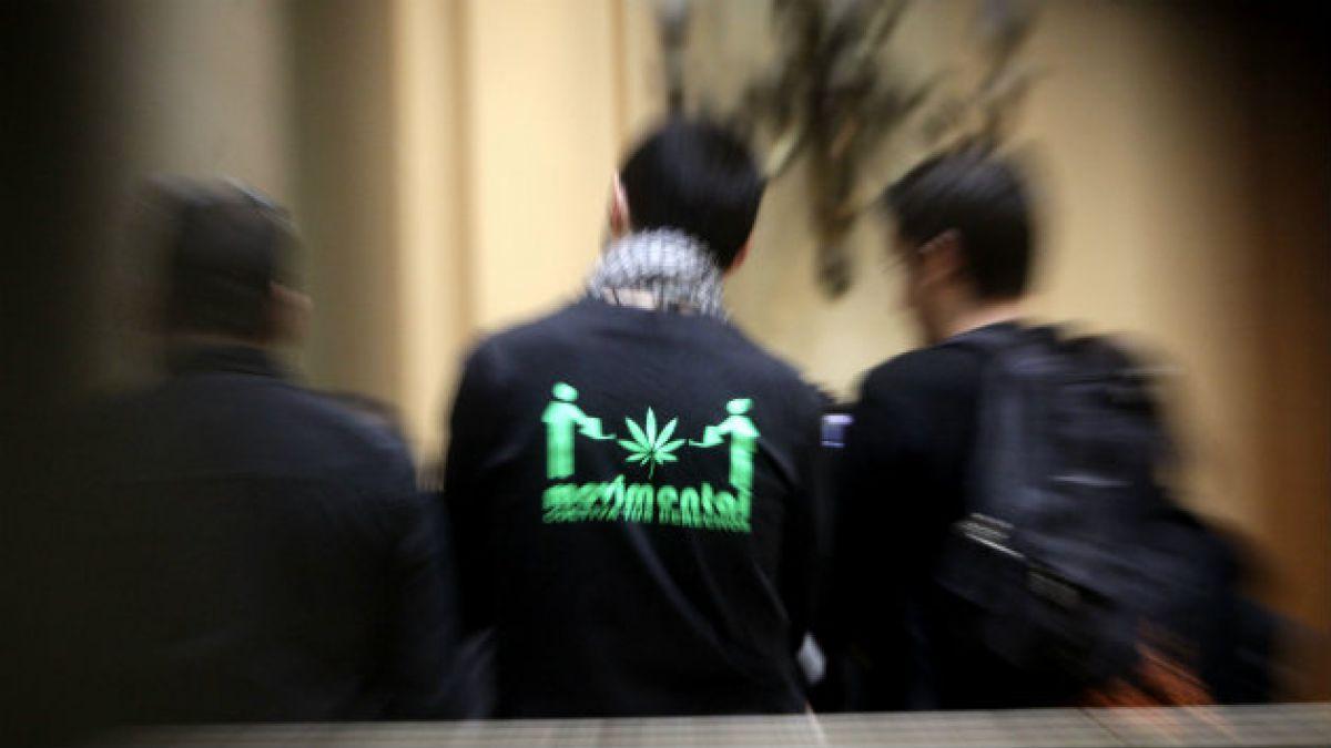 Marihuana: desglose de cifras de Senda revela que 2008 sigue siendo año de mayor consumo entre menor