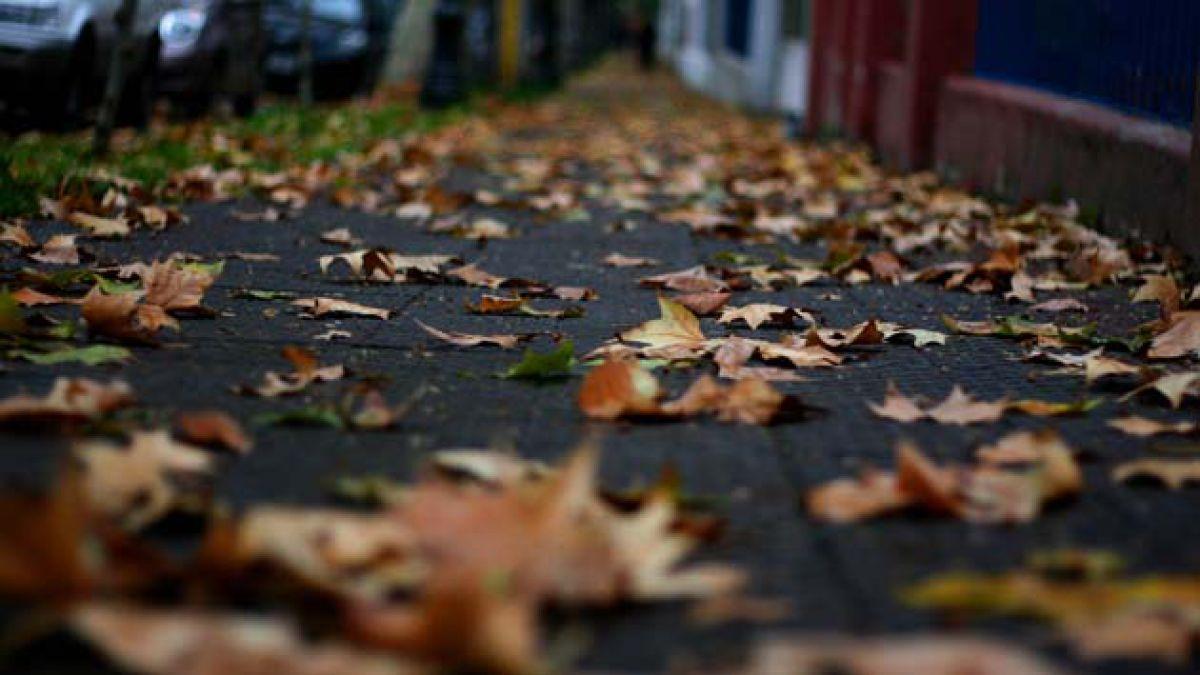 Siete signos de que llegó el otoño