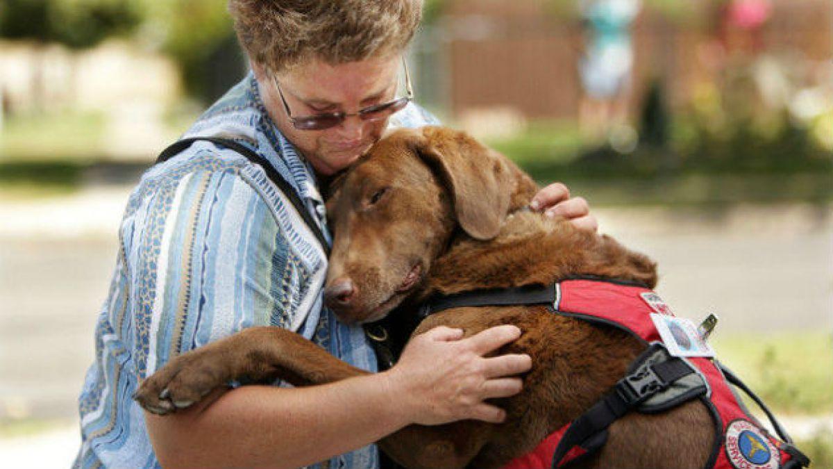 ¿Quiénes son más confiables? ¿Los dueños de perros o gatos?