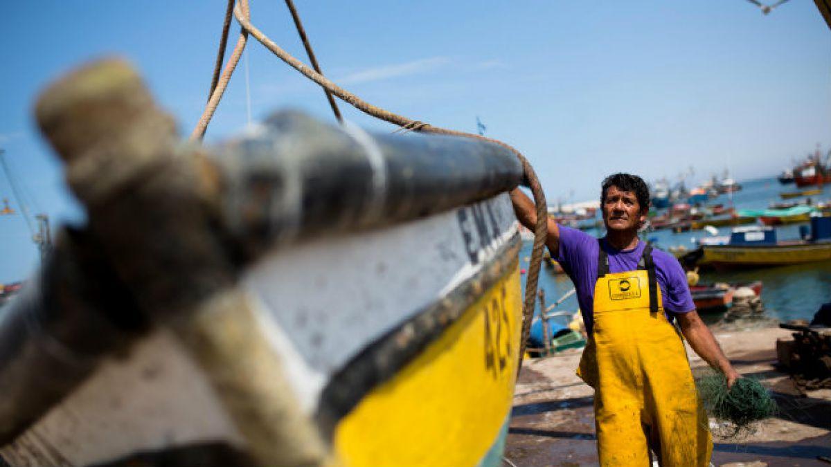 Autoridades piden respetar veda de la merluza desde Coquimbo a Los Lagos durante septiembre