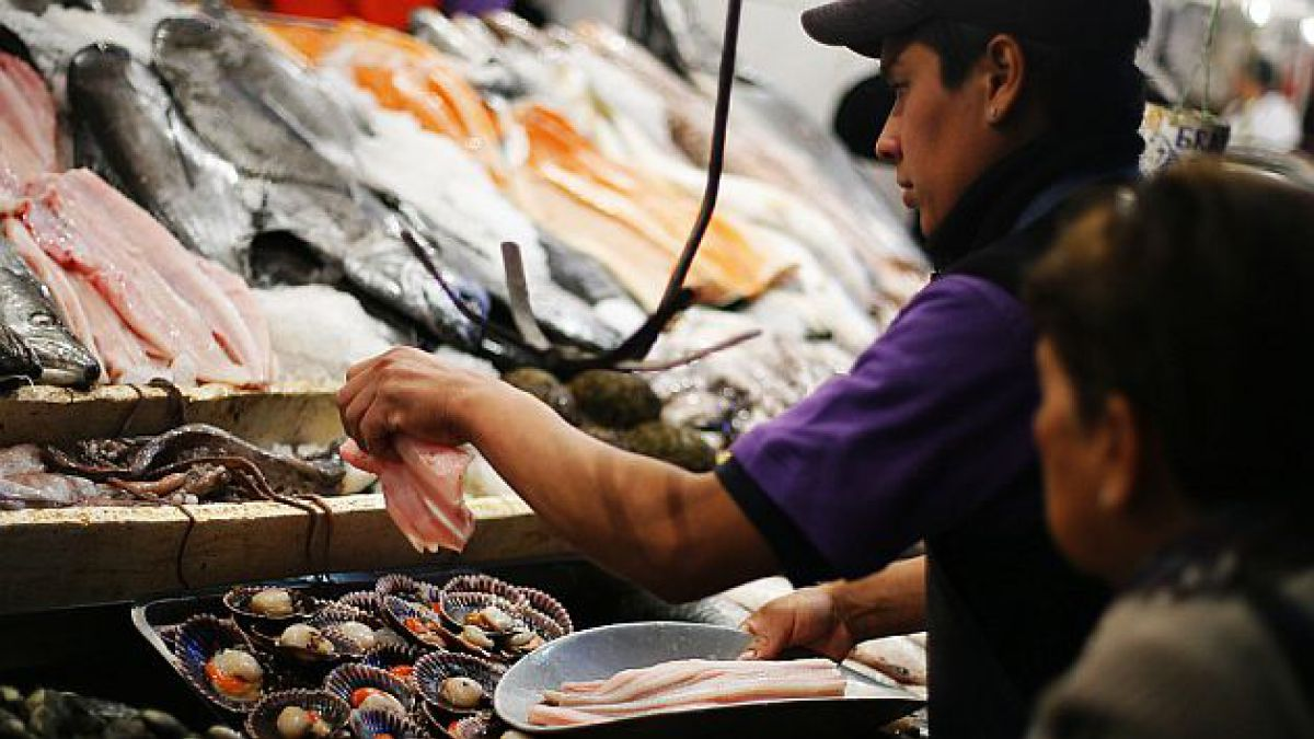 Cómo han subido los precios de los pescados y mariscos en los últimos cuatros años