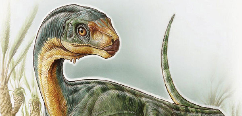 Sueños sobre dinosaurios, ciencia y sustentabilidad