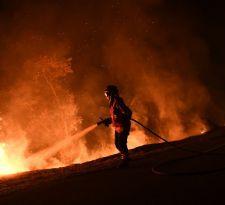 Ministra del Interior de Portugal renuncia en medio de crisis por incendios