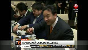 [T13 Tarde] Japón aprueba caza de ballenas y más noticias internacionales con Carlos Zárate