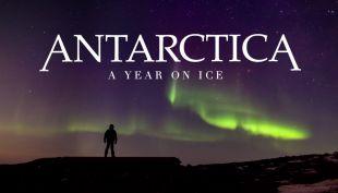 [VIDEO] La Antártica en 365 días: el documental que muestra el lugar más frío de la tierra