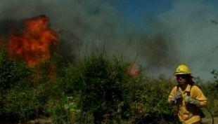[T13] Incendios afectaron a cinco comunas de Valparaíso