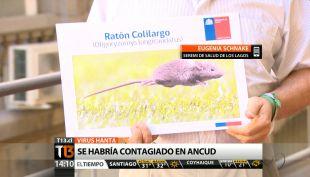 [T13 Tarde] Joven de 23 años es diagnosticada con virus Hanta en Chiloé