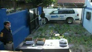 PDI de Quilpue detuvo a 6 personas vinculas al tráfico de drogas