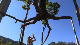 [VIDEO] Impresionante arte selvático en Brasil