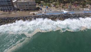 Marejadas y fragata portuguesa: Los efectos de El Niño en este verano