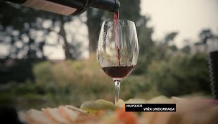 #Hayqueir: Viña Undurraga