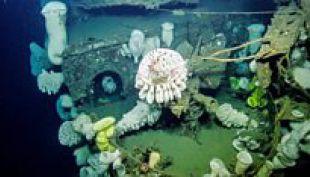 Asombrosas imágenes de un barco de la II Guerra Mundial hundido hace más de 60 años