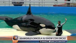 [VIDEO] Seaworld cancela su show con orcas de forma definitiva