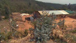 [VIDEO] Vecinos combaten con sus propias manos incendio forestal en El Canelillo