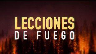 [VIDEO] Reportajes T13 | Lecciones de fuego: Nuevos planes para el combate de incendios forestales