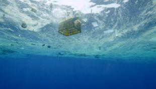 """[VIDEO] """"Pac Man"""" marino: la novedosa lucha contra el plástico"""