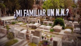 [VIDEO] #ReportajesT13: ¿Mi familiar un N.N?