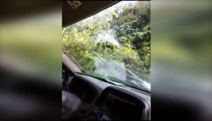 [VIDEO] Tres carabineros heridos en provincia de Arauco