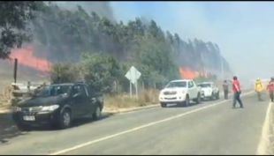 [VIDEO] Evacuación por incendios en Ñuble