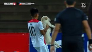 [VIDEO] Infaltable: Perrito interrumpe el partido en debut de Chile en el Sudamericano Sub 17