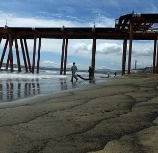 ENAP comunica derrame de petróleo en Quintero
