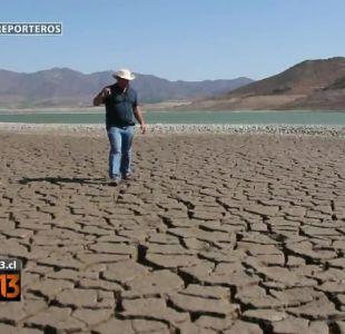 Reporteros: Los efectos de la sequía en el valle del Limarí