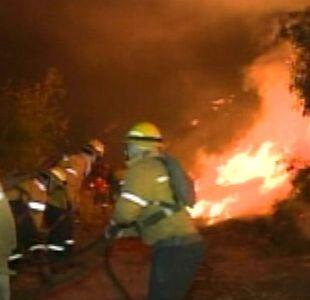Intendente y Conaf interpusieron querella contra quiénes resulten responsables de incendios en Lota