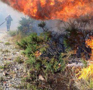Onemi reporta 73 incendios forestales activos en zona centro-sur