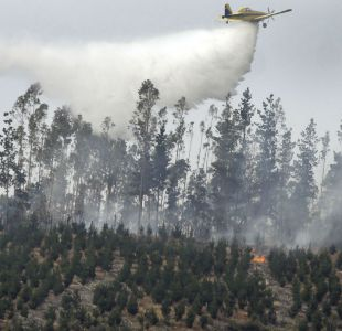 Al menos siete viviendas consumidas por incendio forestal en Santa Juana