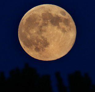 Una Súper Luna dará inicio esta noche a los eventos astronómicos del 2018