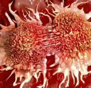 Nueva terapia específica confirma su eficacia contra el cáncer de mama