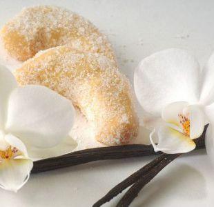 """Las orquídeas son las """"pervertidas"""" del mundo vegetal, dice Warren."""