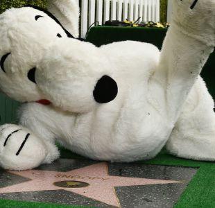 Snoopy gozando de su nuevo estatus