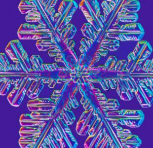 La espectacular belleza de los copos de nieve