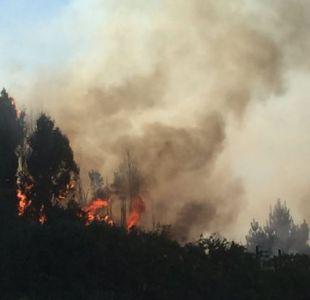Incendio forestal Castro