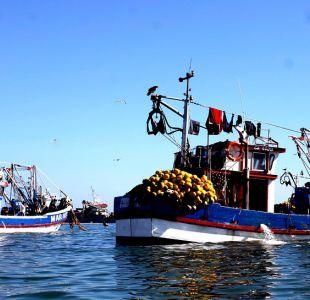 Ley de Pesca: Gobierno y FAO realizarán consulta para su reformulación