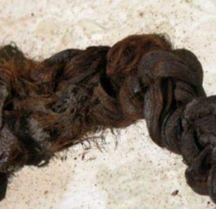 El misterio del cabello encontrado en un féretro en la abadía de Romsey