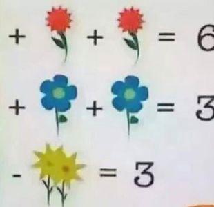La ecuación matemática de las flores que enloquece a Internet