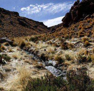 Bolivia contrademanda a Chile por aguas del río Silala
