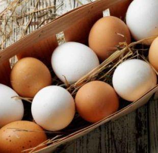 ¿Cuáles son las verdaderas diferencias entre los huevos blancos y de color?