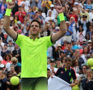 Del Potro vence a Ferrer y se instala en los octavos del US Open