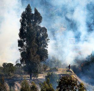 Onemi declara Alerta Roja para la comuna de Llaillay por incendio forestal