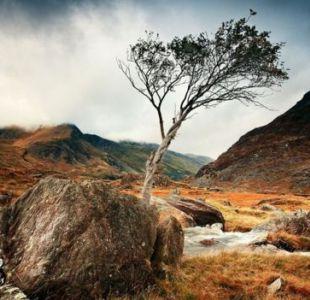 El mágico otoño de Gales que la revista Lonely Planet recomienda conocer