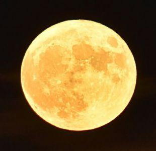 Foto de la superluna en primer plano.Image copyrightGETTY IMAGES Image caption La superluna no sería del todo agrado de los astrónomos.
