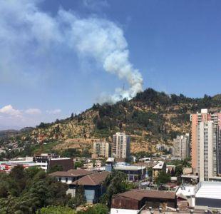40 hectáreas fueron las afectadas en incendio de Cerro San Cristóbal