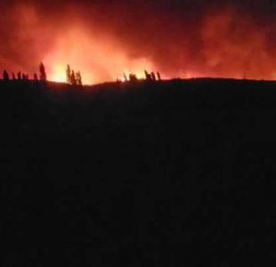 Incendio forestal en Paredones destruye 14 viviendas y obliga a evacuación