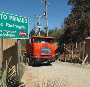 Perú suspende importaciones de aves desde Chile por gripe aviar